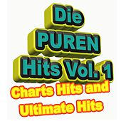 Die Puren Hits Vol. 1 - Charts Hits and Ultimate Hits 2015 & 2016 de Various Artists