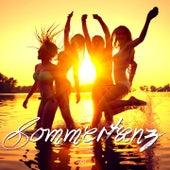 Sommertanz, Vol. 1 von Various Artists