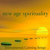 New Age Spirituality: Instrumental Calming Songs for Reiki Meditation & Mindfulness, Discover the New Age Movement of Spiritual Healing de Reiki Music