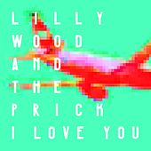 I Love You by Lilly Wood and The Prick