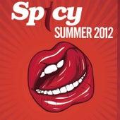 Spicy Summer 2012 de Various Artists