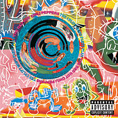 The Uplift Mofo Party Plan de Red Hot Chili Peppers