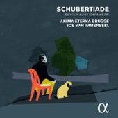 Schubertiade by Various Artists