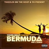 Bermuda, Pt. 3: Human by Young Gully