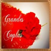 Grandes Coplas von Various Artists