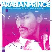 Innovative Life de Arabian Prince