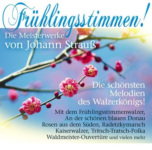 Frühlingsstimmen! Die Meisterwerke von J. Strauss by Johann Strauss Orchester - Her