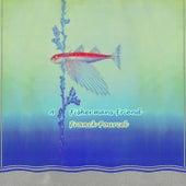 A Fishermans Friend von Franck Pourcel