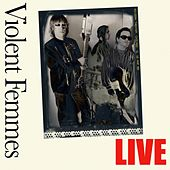 Live - Riviera Theater, Chicago, IL 16 Mar '89 - Remastered by Violent Femmes