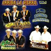 Arriba la Sierra, Vol. 1 de Various Artists