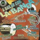 Que Retumbe La Banda, Vol. 5 de Various Artists