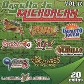 Orgullo De Michoacan, Vol. 10 by Various Artists