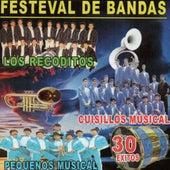 Festival De Bandas - 30 Exitos by Various Artists