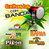 Exitasos con Banda by Various Artists