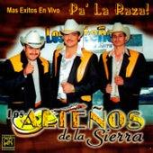 Mas Exitos En Vivo Pa' La Raza by Los Altenos De La Sierra (1)