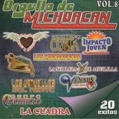 Orgullo De Michoacan, Vol. 8 by Various Artists