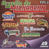 Orgullo De Michoacan, Vol. 6 by Various Artists