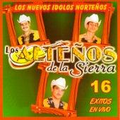 16 Exitos En Vivo by Los Altenos De La Sierra (1)
