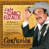 Confusion by Lalo El Gallo Elizalde