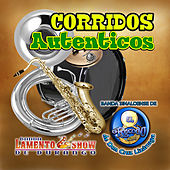 Corridos Autenticos by Various Artists