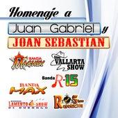 Homaje A Juan Gabriel y Joan Sebastian de Various Artists