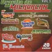Orgullo de Michoacan, Vol. 5 de Various Artists