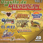 Orgullo de Michoacan, Vol. 7 de Various Artists