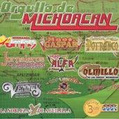 Orgullo De Michoacan - Exitos Calentanos by Various Artists