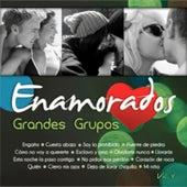 Exitos Grandes Grupos Volumen 4 by Various Artists