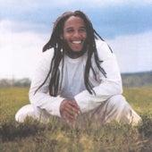Free Like We Want 2 B by Ziggy Marley