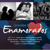 Grandes Boleros Volumen 2 by Various Artists