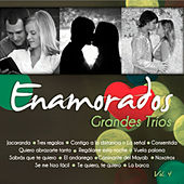 Grandes Tríos Volumen 4 by Various Artists