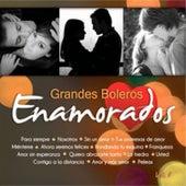 Grandes Boleros Volumen 1 by Various Artists