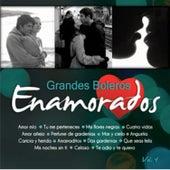 Grandes Boleros Volumen 4 by Various Artists