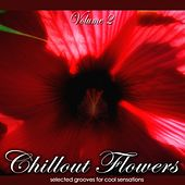 Chillout Flowers, Vol. 2 (Selected Grooves for Cool Sensations) von Various Artists