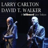 @ Billboard (Live Tokyo) de Larry Carlton