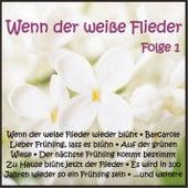Wenn der weiße Flieder, Folge 1 de Various Artists