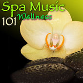 Spa Music 101 Wellness – Ultimate Soothing Relaxing Sounds for Spas, Hammam, Sauna & Wellness Center Massage von Various Artists