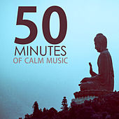 50 Minutes of Calm Music - Relaxing Tracks for a Quick Meditation Session by Calm Music Ensemble
