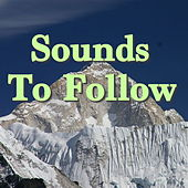 Sounds To Follow by Various Artists