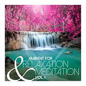 Ambient for Relaxation & Meditation, Vol. 1 by Various Artists