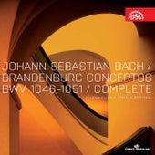 Bach: Brandenburg Concertos Nos 1-6 / Musica Florea, Štryncl von Musica Florea