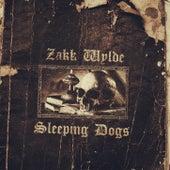 Sleeping Dogs by Zakk Wylde
