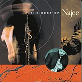 The Best Of Najee fra Najee