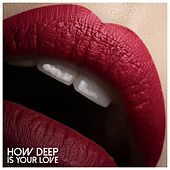 How Deep Is Your Love by Various Artists
