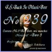 Cantata No.3, Ach Gott, wie manches Herzeleid, Bwv3 by Shinji Ishihara