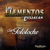 Con Tololoche by Los Elementos de Culiacan