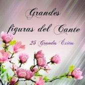 Grandes Figuras del Cante - 25 Grandes Éxitos von Various Artists