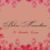 Boleros Maravillosos - 25 Grandes Éxitos de Various Artists