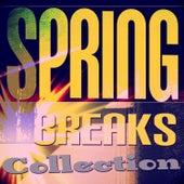 Spring Breaks Collection von Various Artists